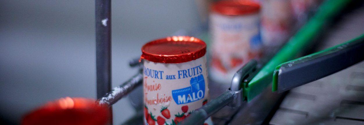 reportage effectue dans la laiterie Malo